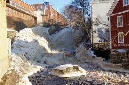 Ronneby Ekomarknad fokuserar på det lokala flödet