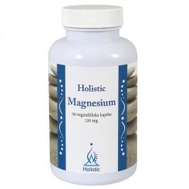 Magnesium 120 mg 100 kapslar Holistic