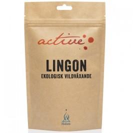 Lingonpulver 100 g Holistic