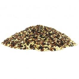 Quinoa Hel Röd-Svart-Vit Peru