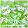 Pushkar - Inner Harvest